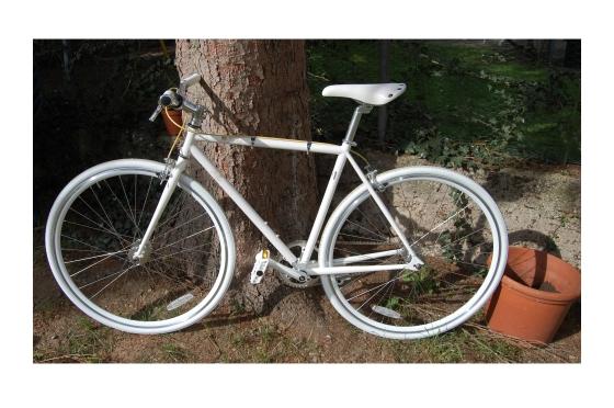 bike croped2
